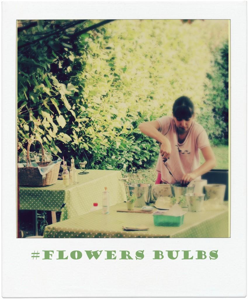 meflowers